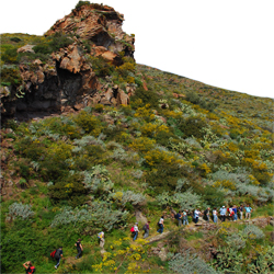 Nesos trekking tours at Aeolian Islands